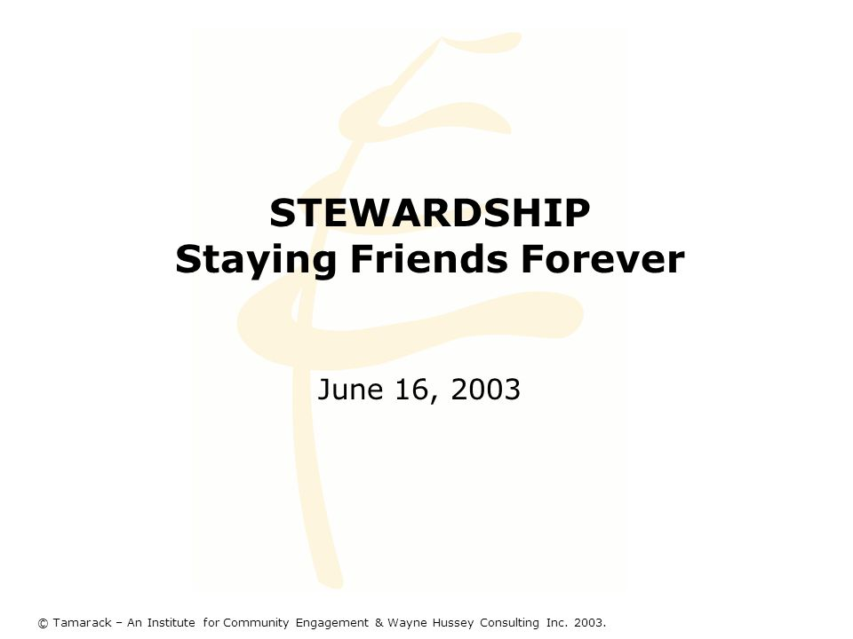 STEWARDSHIP Staying Friends Forever June 16, 2003 © Tamarack – An Institute for Community Engagement & Wayne Hussey Consulting Inc. 2003.