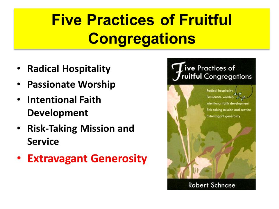 Five Practices of Fruitful Congregations Radical Hospitality Passionate Worship Intentional Faith Development Risk-Taking Mission and Service Extravagant Generosity