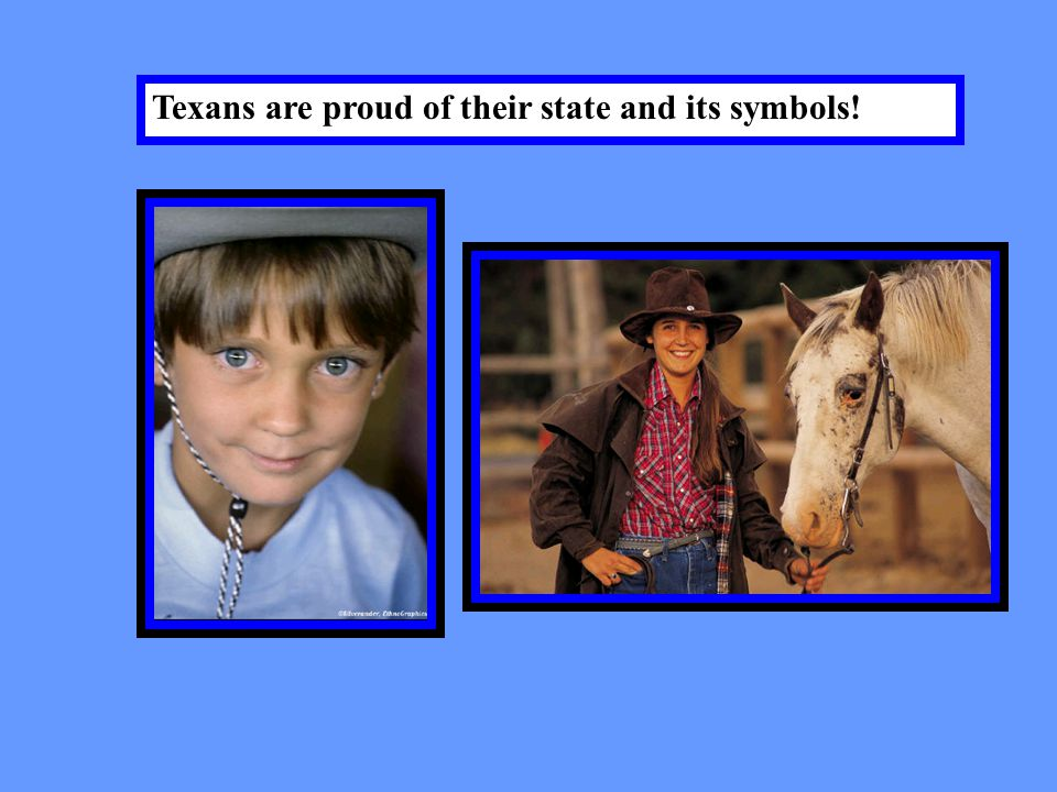 The Texas motto is….. Friendship!