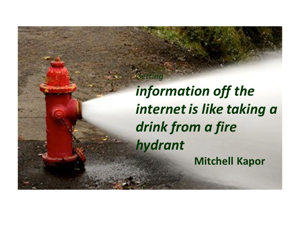 Getting information off the internet is like taking a drink from a fire hydrant Mitchell Kapor