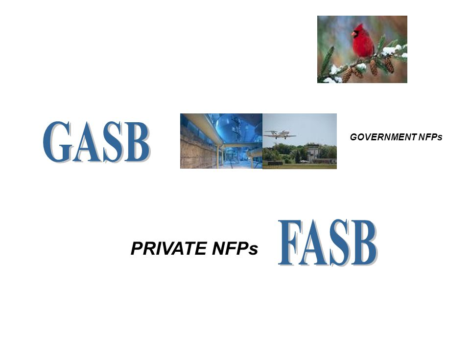 GOVERNMENT NFPs PRIVATE NFPs