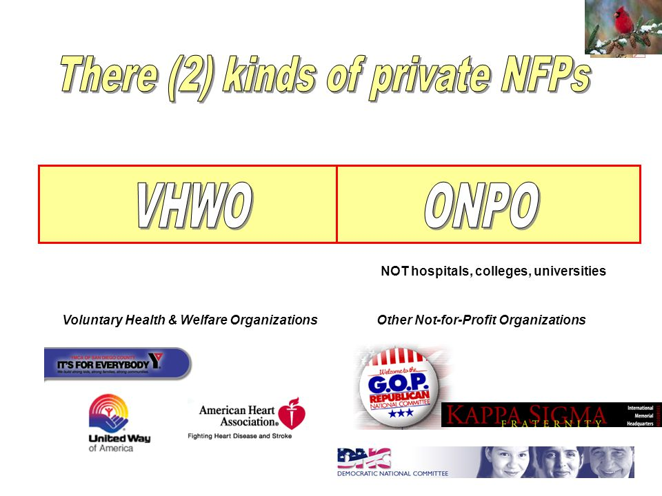 Voluntary Health & Welfare OrganizationsOther Not-for-Profit Organizations NOT hospitals, colleges, universities