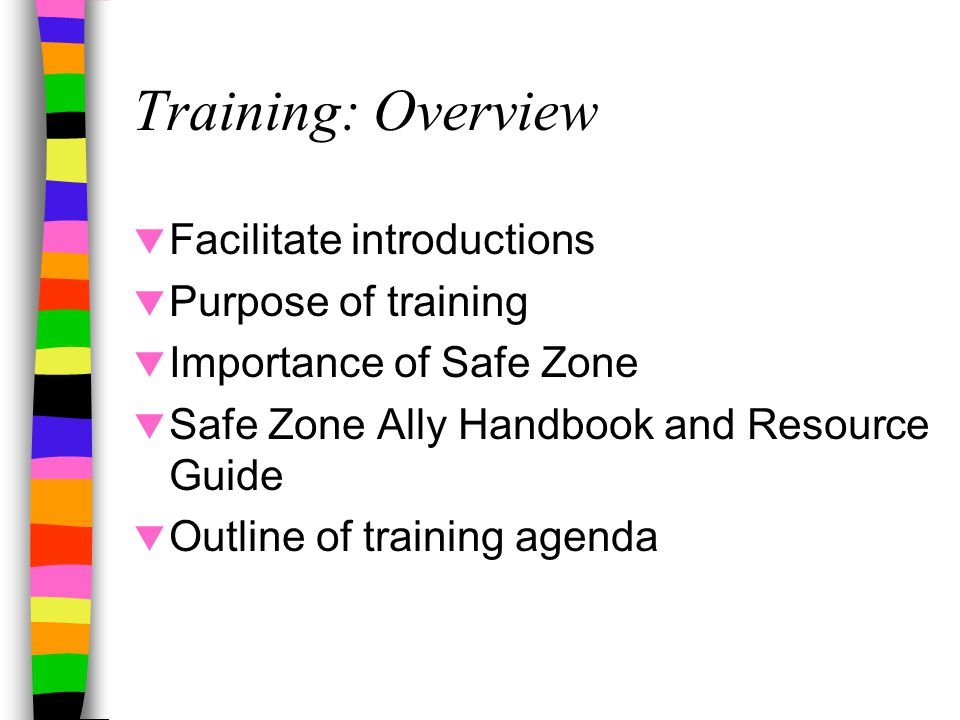 Training: Overview  Facilitate introductions  Purpose of training  Importance of Safe Zone  Safe Zone Ally Handbook and Resource Guide  Outline of training agenda