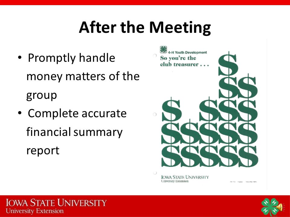 At the Meeting Give the Treasurer s Report