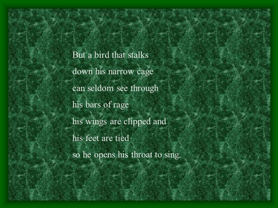 But a bird that stalks down his narrow cage can seldom see through his bars of rage his wings are clipped and his feet are tied so he opens his throat to sing.