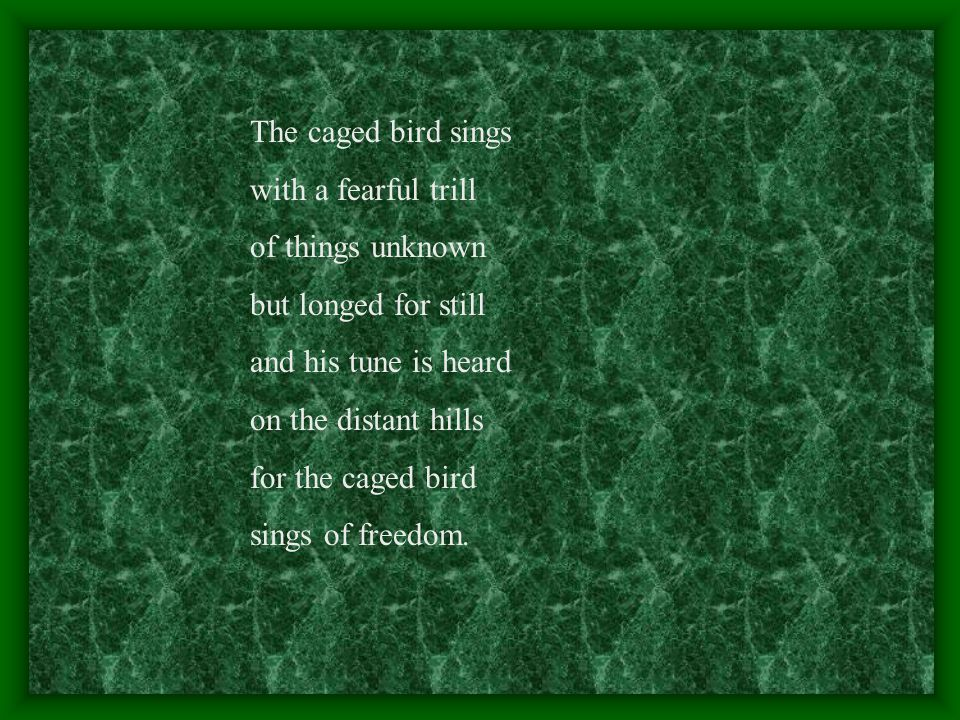 The caged bird sings with a fearful trill of things unknown but longed for still and his tune is heard on the distant hills for the caged bird sings of freedom.