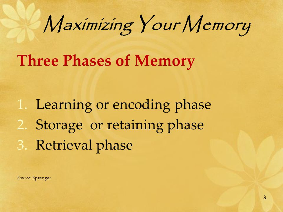 The Mystery of Memory The Basics to Remember.Memory is about making CONNECTIONS.