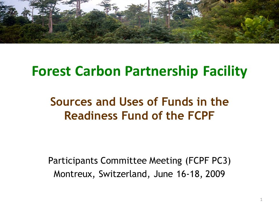 At March meeting the PC requested the FMT to present a note on resolving the funding gap (Res PC/2/2009/1) To include: – Sources and uses of funds – Assessment of R-Plan (R-PP) progress Note already provided to PC (Note FMT 2009-4-rev) Introduction 2
