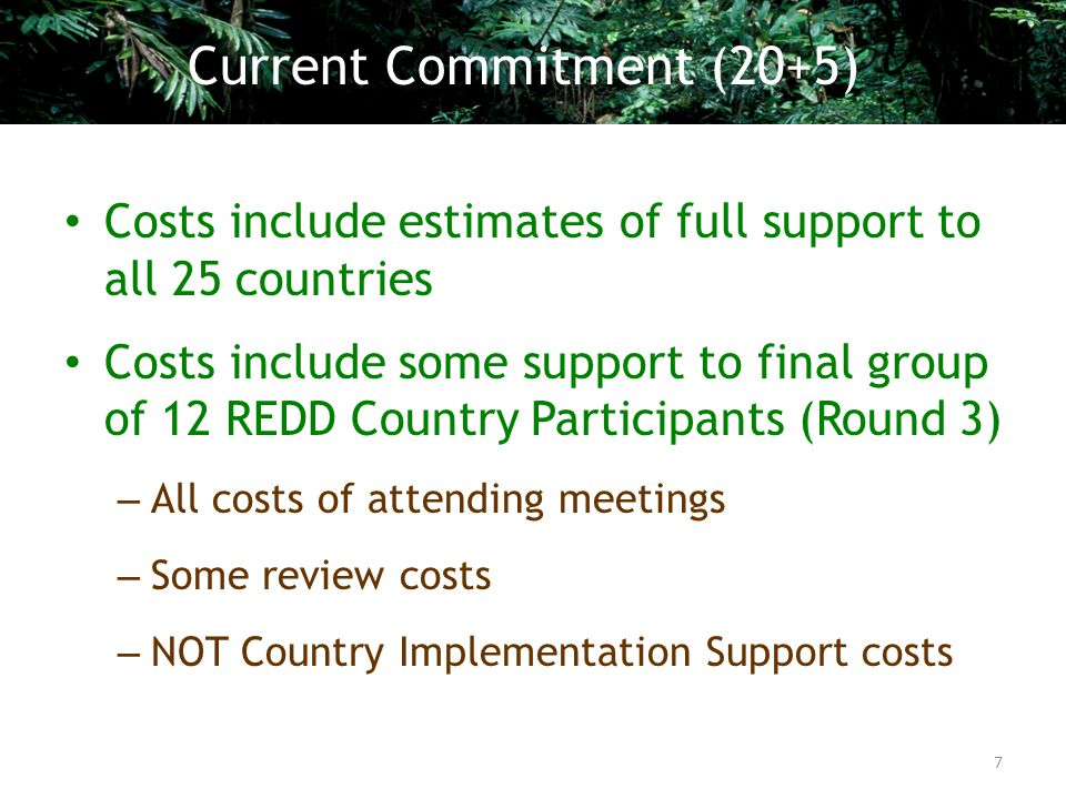 Costs include estimates of full support to all 25 countries Costs include some support to final group of 12 REDD Country Participants (Round 3) – All