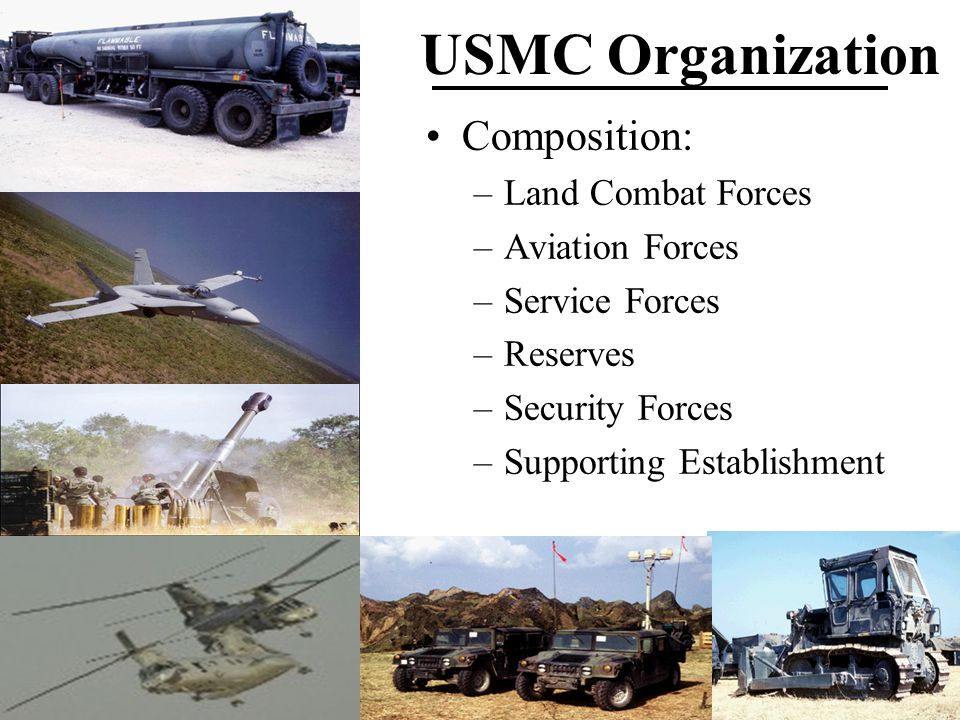 Composition: –Land Combat Forces –Aviation Forces –Service Forces –Reserves –Security Forces –Supporting Establishment
