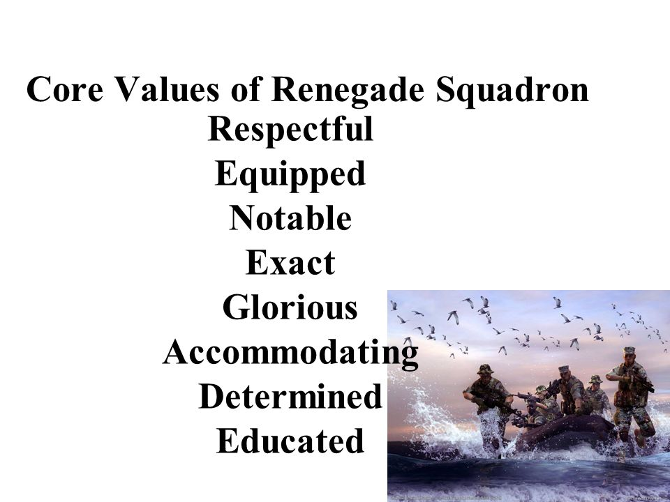 Respectful Equipped Notable Exact Glorious Accommodating Determined Educated Core Values of Renegade Squadron