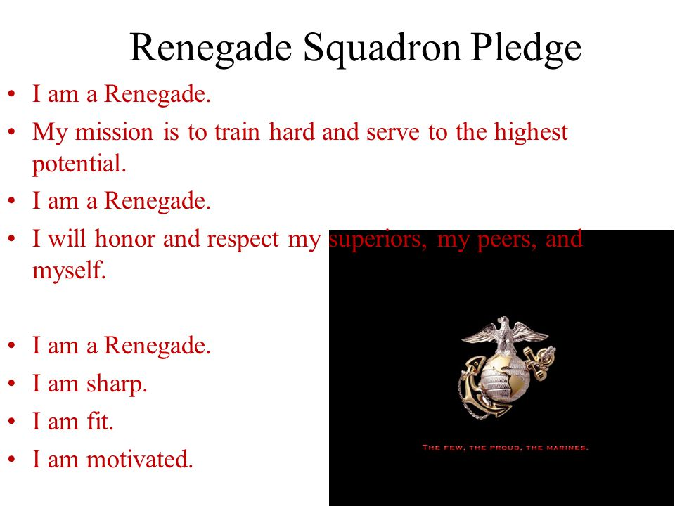 Renegade Squadron Pledge I am Renegade, Future Marine, Soldier, Air man, Guardian of my country I will never falter, fail, or drift from my goals.