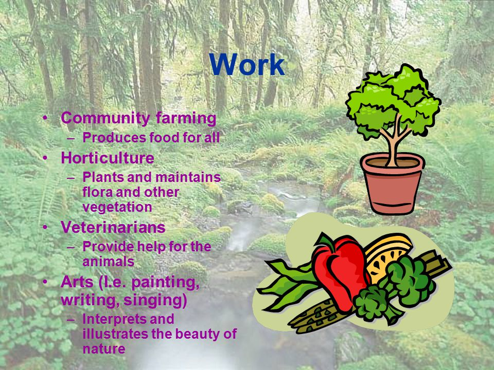 Work Community farming –Produces food for all Horticulture –Plants and maintains flora and other vegetation Veterinarians –Provide help for the animals Arts (I.e.