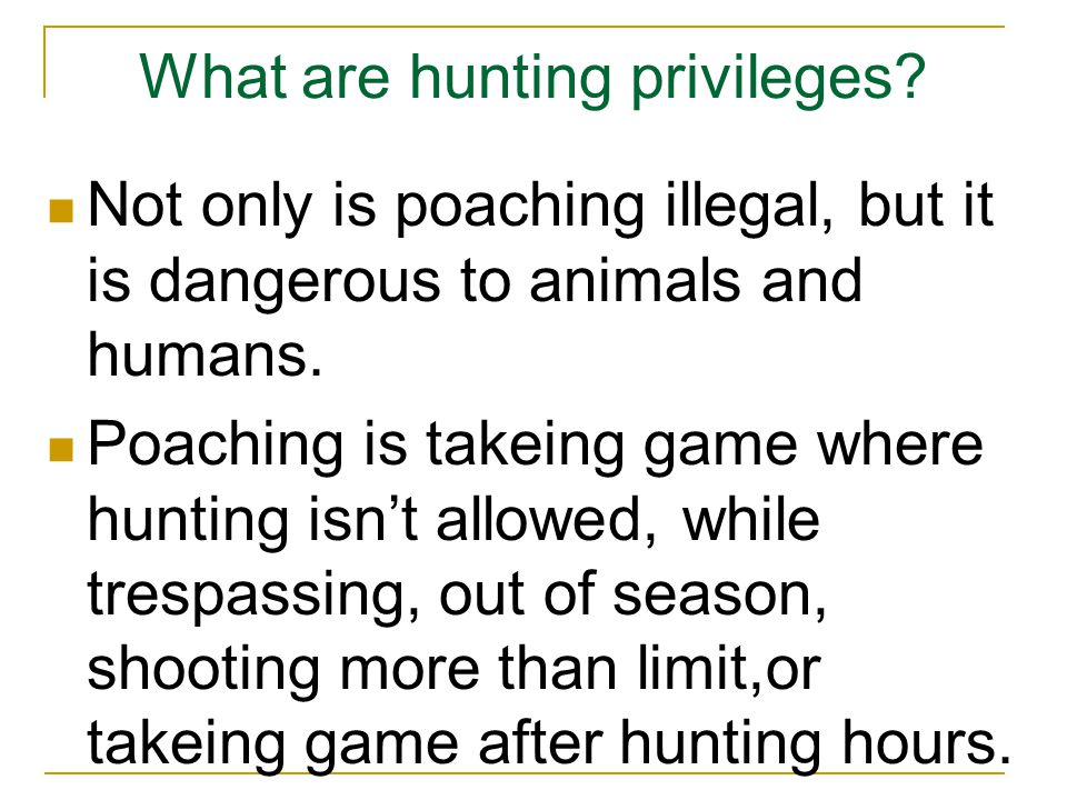 What are hunting privileges.
