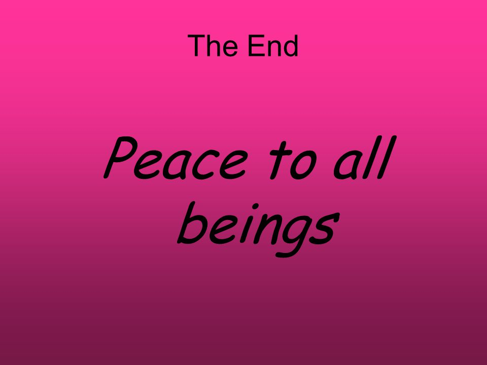 The End Peace to all beings
