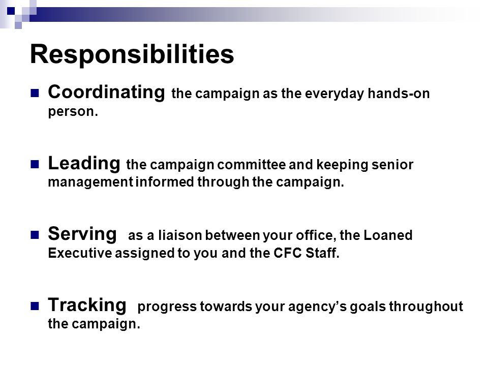 Responsibilities Coordinating the campaign as the everyday hands-on person.