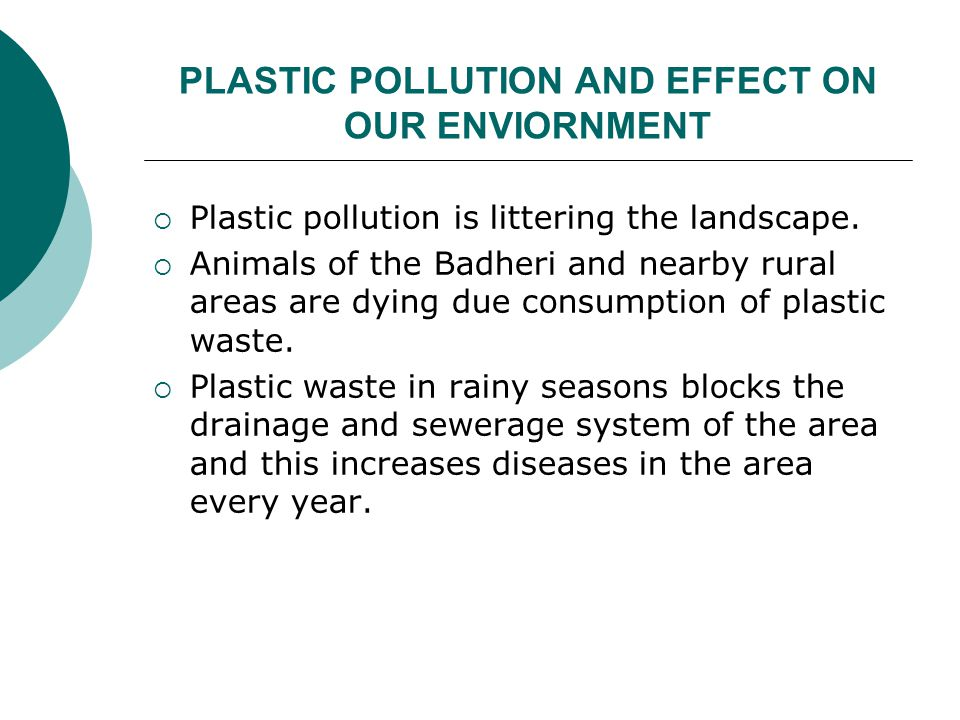 PLASTIC POLLUTION AND EFFECT ON OUR ENVIORNMENT  Plastic pollution is littering the landscape.  Animals of the Badheri and nearby rural areas are dy