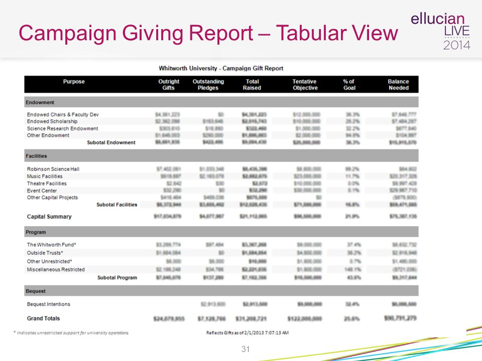 Campaign Giving Report – Tabular View 31