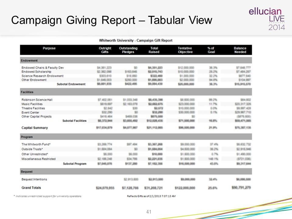 Campaign Giving Report – Tabular View 41