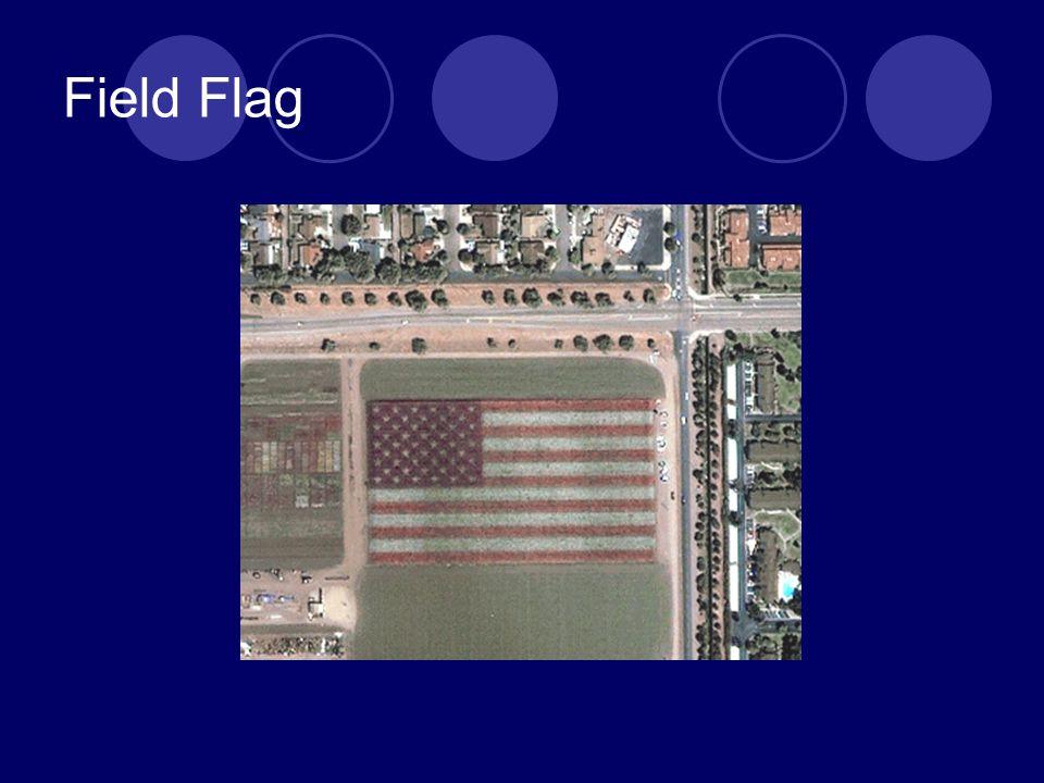 Field Flag