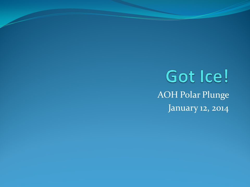 AOH Polar Plunge January 12, 2014