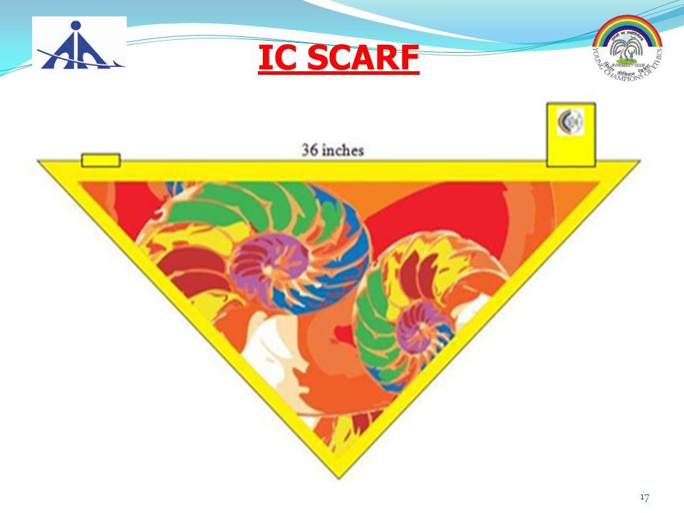 IC SCARF 17