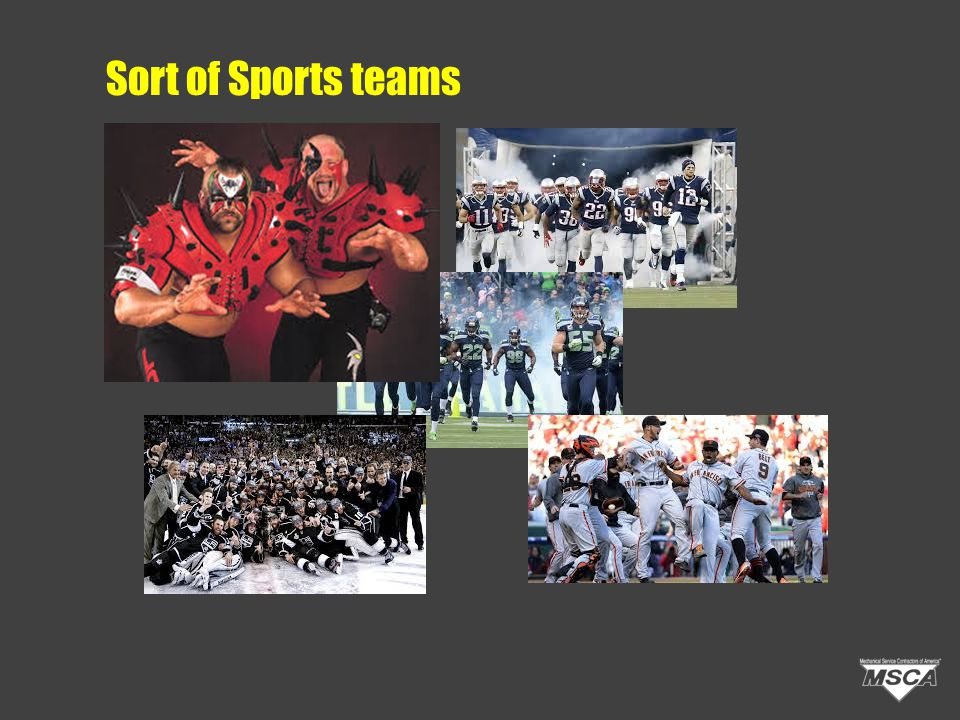 Sort of Sports teams