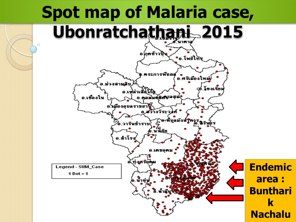 Spot map of Malaria case, Ubonratchathani 2015 Endemic area : Bunthari k Nachalu ay and Namyue n (793)