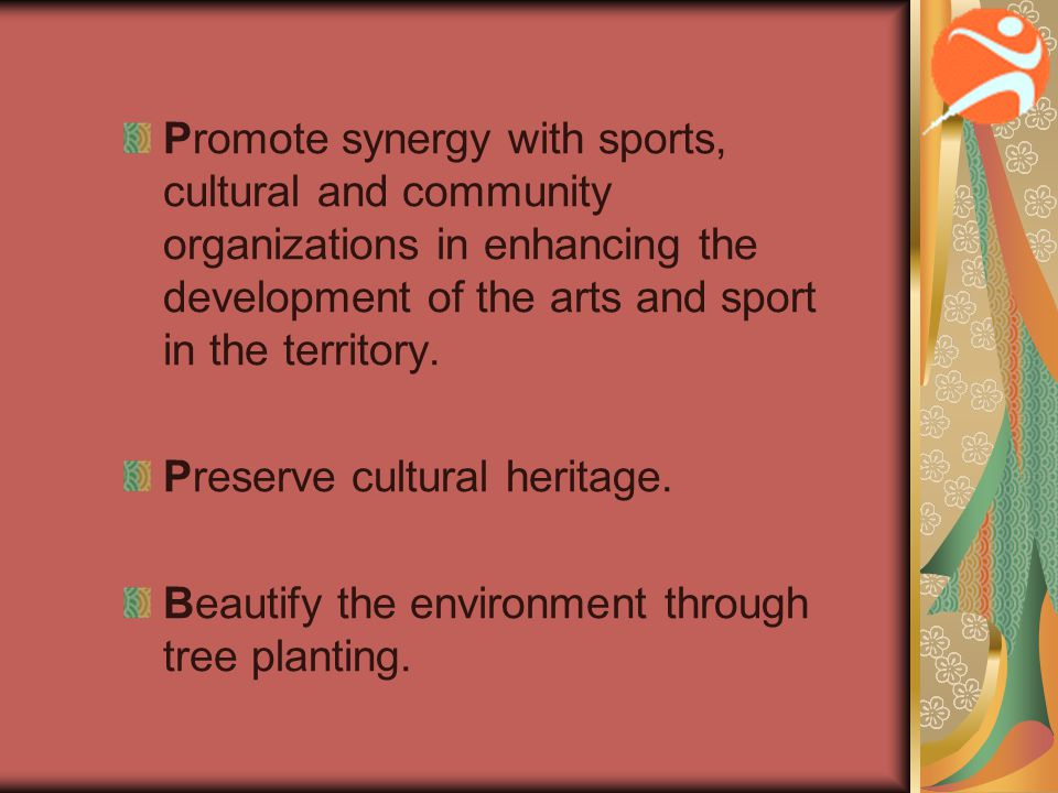 Promote synergy with sports, cultural and community organizations in enhancing the development of the arts and sport in the territory. Preserve cultur