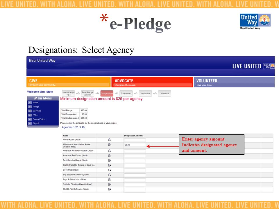 Designations: Select Agency Enter agency amount Indicates designated agency and amount.