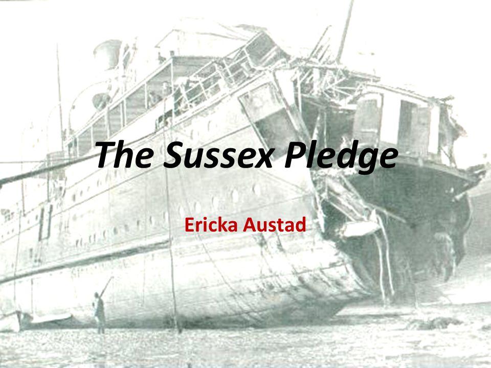 The Sussex Pledge Ericka Austad