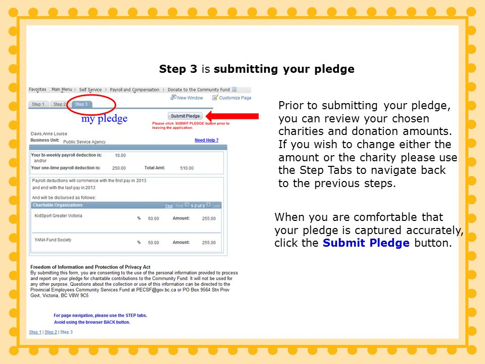 Prior to submitting your pledge, you can review your chosen charities and donation amounts.
