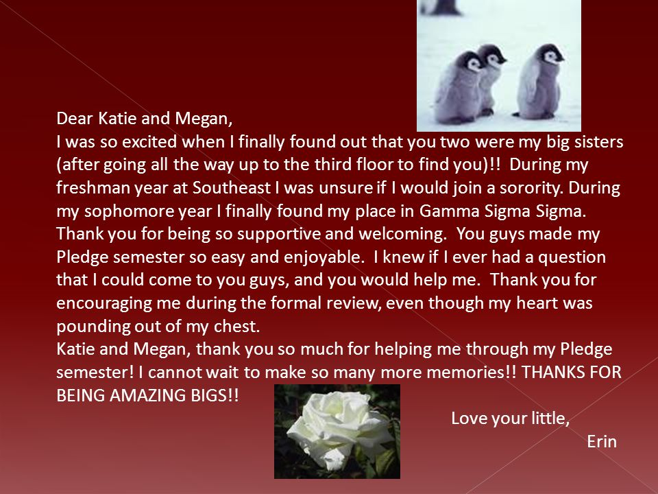 Dear Katie and Megan, I was so excited when I finally found out that you two were my big sisters (after going all the way up to the third floor to fin