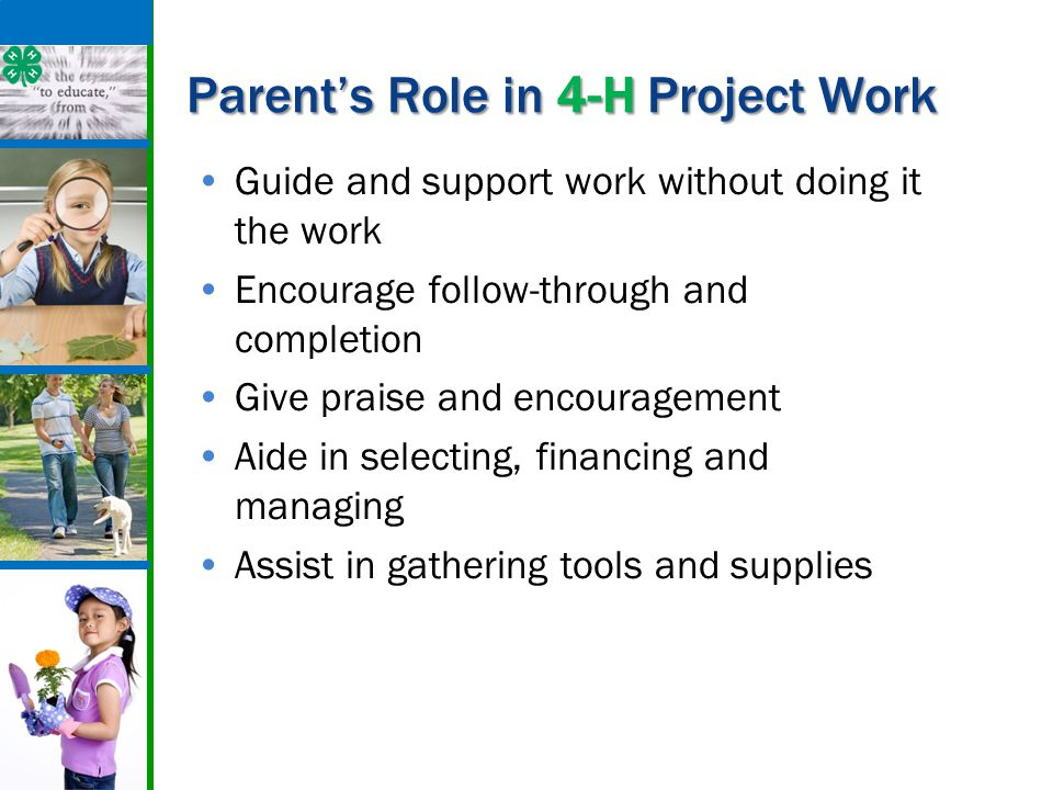 Parent's Role in 4-H Project Work Guide and support work without doing it the work Encourage follow-through and completion Give praise and encourageme