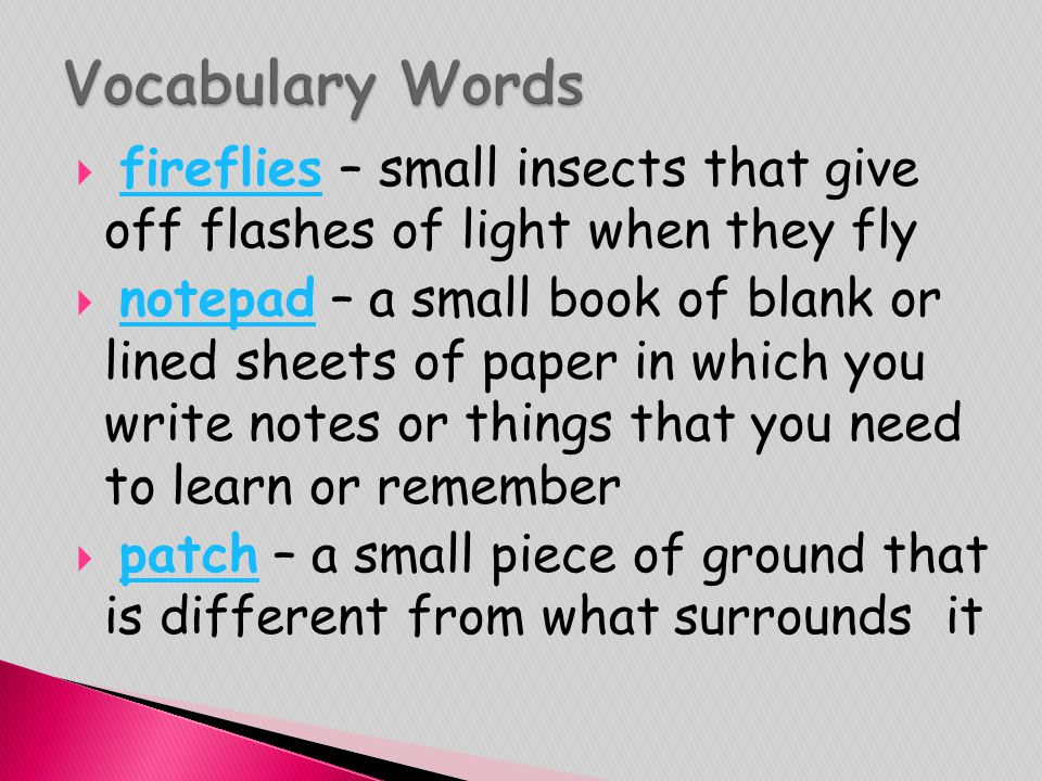  fireflies – small insects that give off flashes of light when they flyfireflies  notepad – a small book of blank or lined sheets of paper in which
