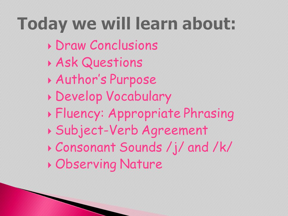  Draw Conclusions  Ask Questions  Author's Purpose  Develop Vocabulary  Fluency: Appropriate Phrasing  Subject-Verb Agreement  Consonant Sounds