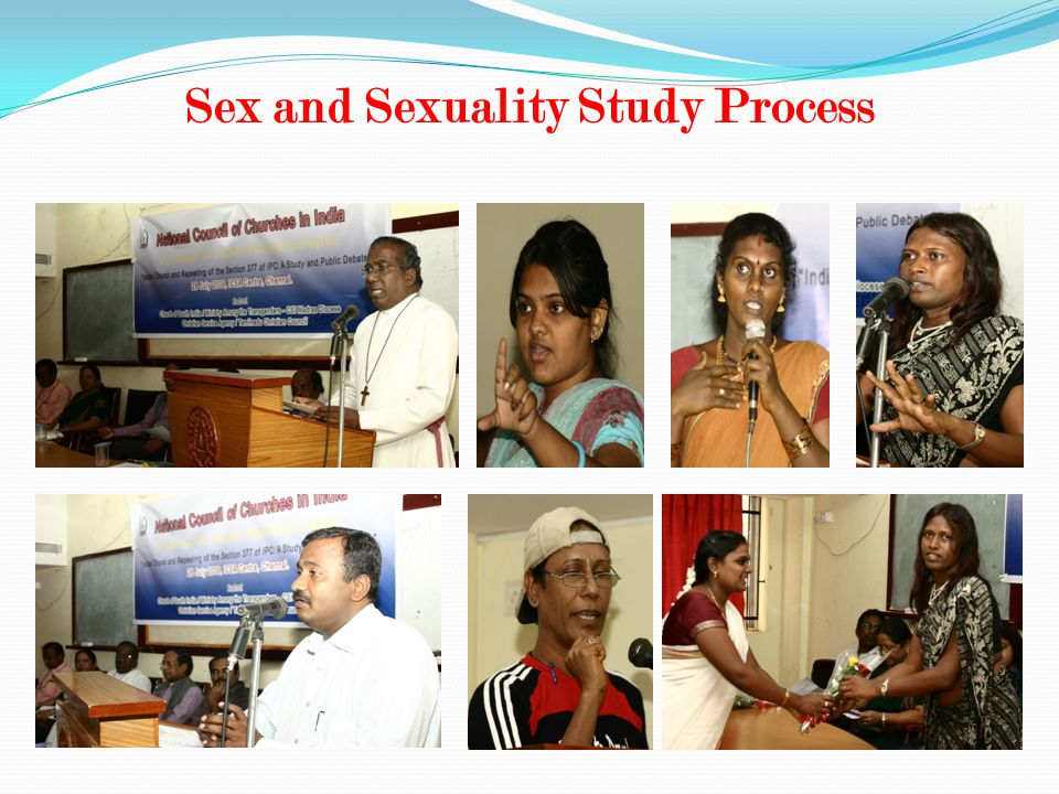 Sex and Sexuality Study Process