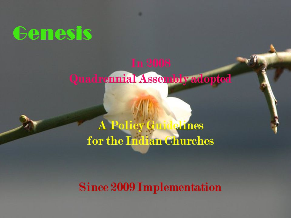 In 2008 Quadrennial Assembly adopted A Policy Guidelines for the Indian Churches Since 2009 Implementation Genesis