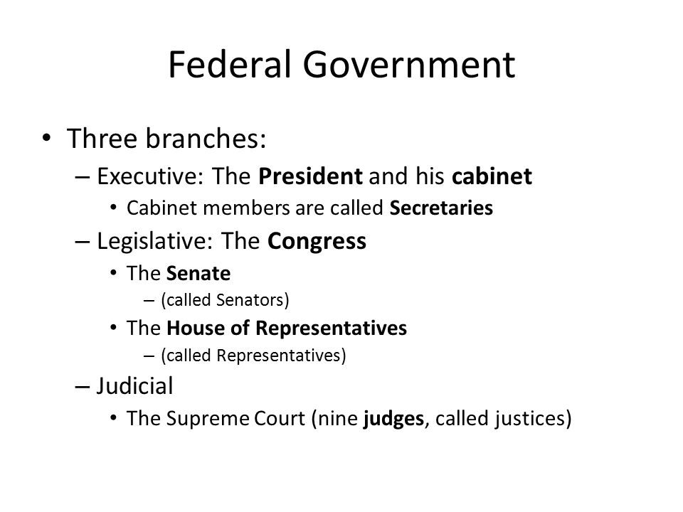 Federal Government Three branches: – Executive: The President and his cabinet Cabinet members are called Secretaries – Legislative: The Congress The S