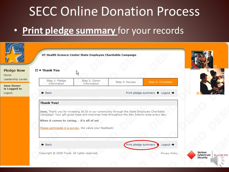 SECC Online Donation Process Enter your email address if you would like an email confirmation Review your contribution Submit Contribution