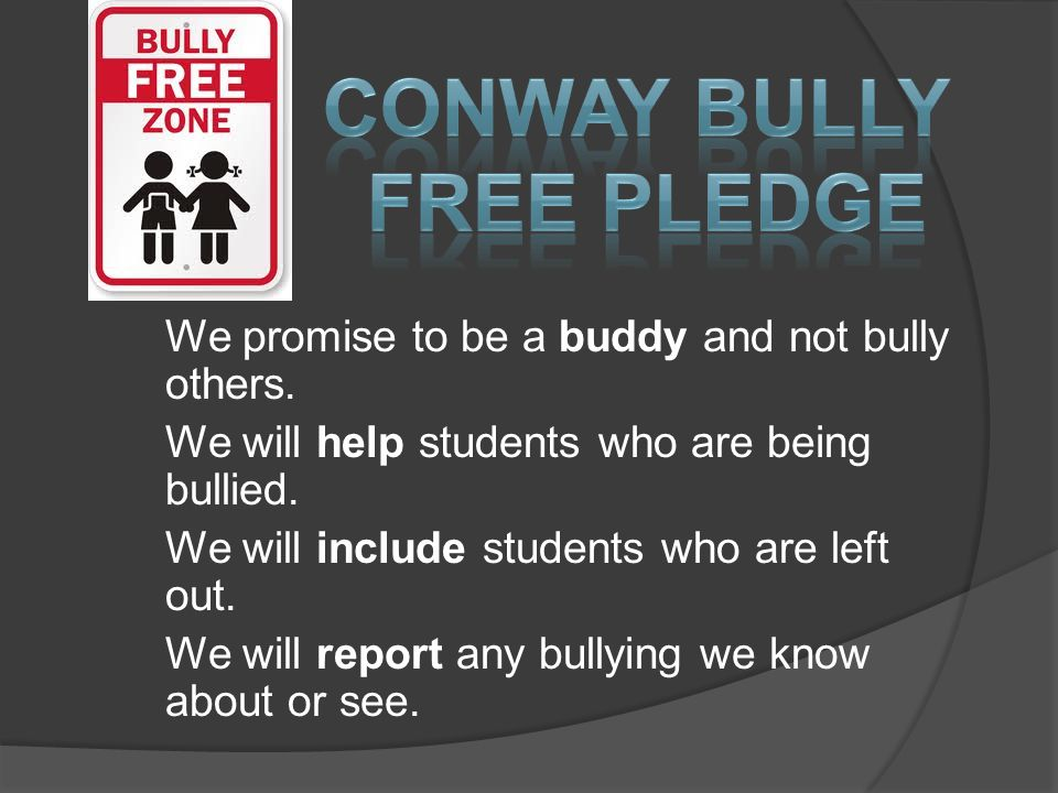 We promise to be a buddy and not bully others. We will help students who are being bullied.