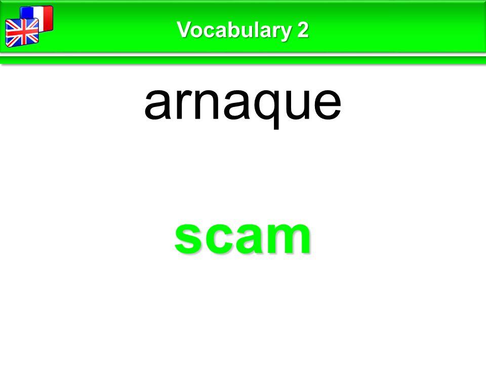 scam arnaque Vocabulary 2