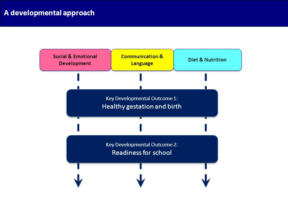 A developmental approach Social & Emotional Development Communication & Language Diet & Nutrition Key Developmental Outcome 1: Healthy gestation and b