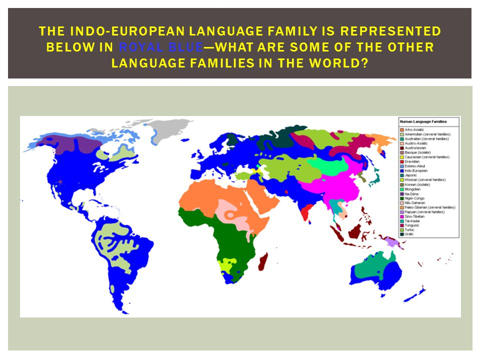 THE INDO-EUROPEAN LANGUAGE FAMILY IS REPRESENTED BELOW IN ROYAL BLUE—WHAT ARE SOME OF THE OTHER LANGUAGE FAMILIES IN THE WORLD