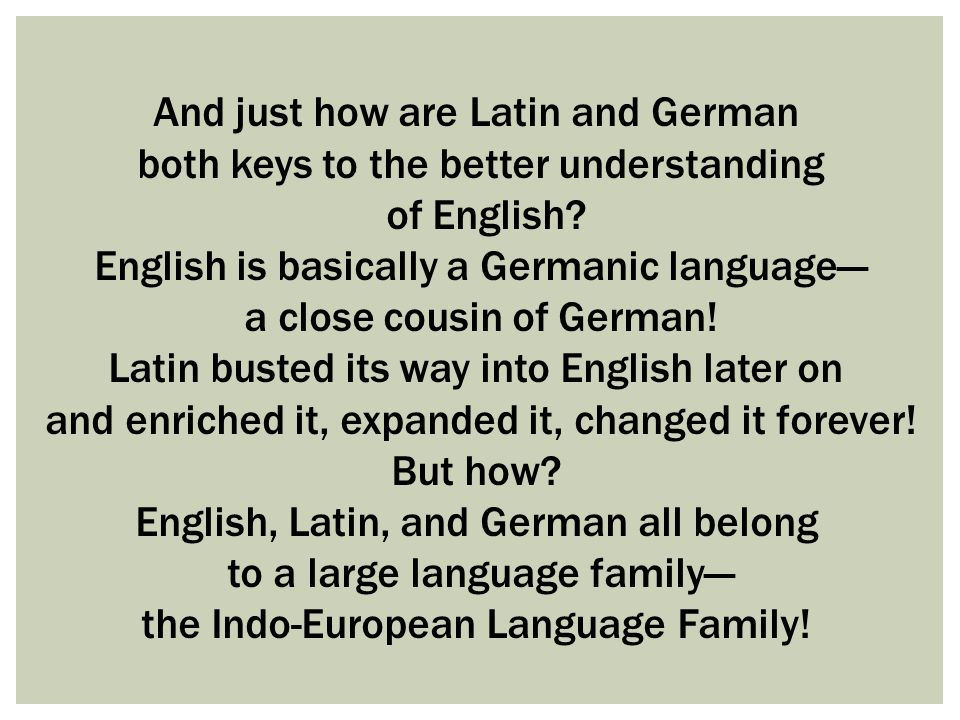 THE INDO-EUROPEAN LANGUAGE FAMILY CONTAINS LANGUAGES FOUND IN MANY PARTS OF THE WORLD— WESTERN AND EASTERN EUROPE, RUSSIA, INDIA, IRAN, TURKEY.