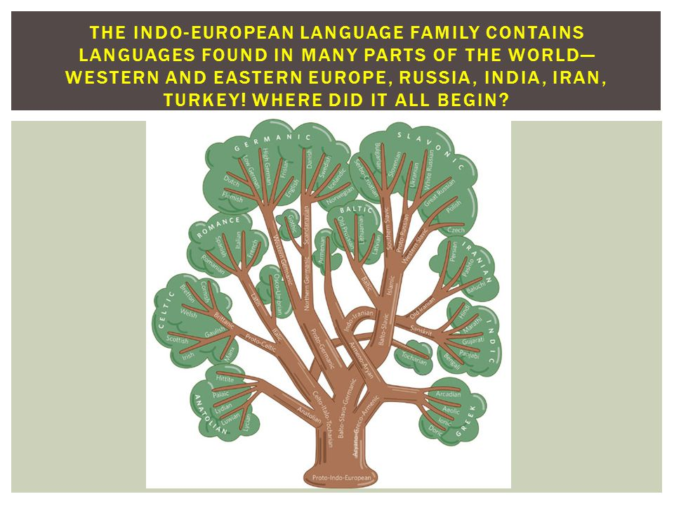 THE INDO-EUROPEAN LANGUAGE FAMILY IS REPRESENTED BELOW IN ROYAL BLUE—WHAT ARE SOME OF THE OTHER LANGUAGE FAMILIES IN THE WORLD?