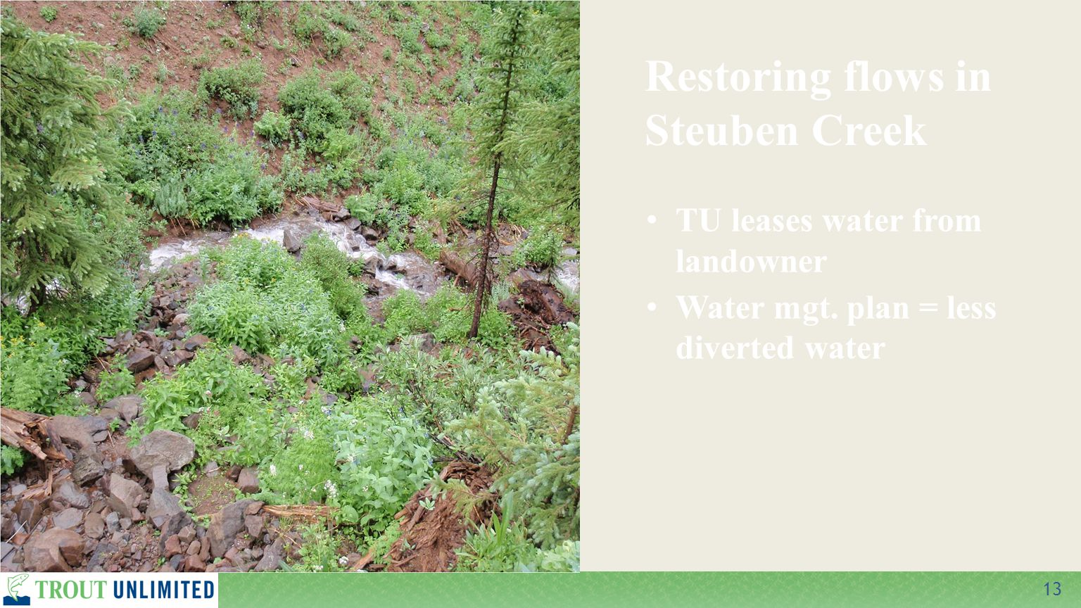 13 TU leases water from landowner Water mgt.