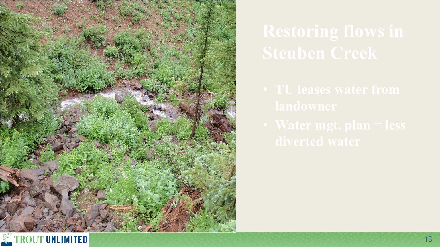 13 TU leases water from landowner Water mgt. plan = less diverted water Restoring flows in Steuben Creek