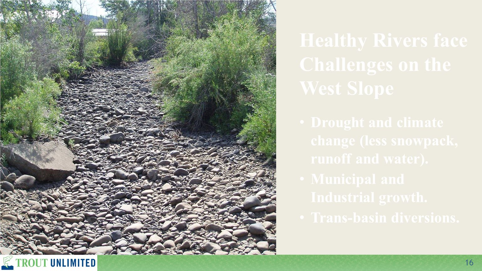 16 Drought and climate change (less snowpack, runoff and water). Municipal and Industrial growth. Trans-basin diversions. Healthy Rivers face Challeng