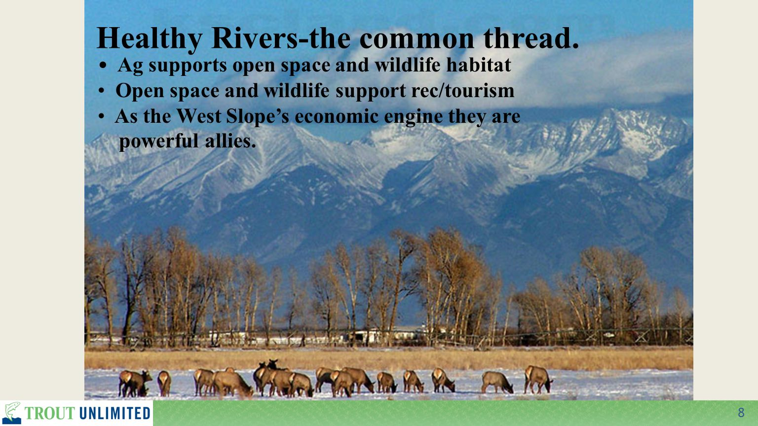 8 Healthy Rivers-the common thread.